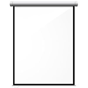 "Picture of Passport Screen - Wall Mount (28.8"" x 60"")"