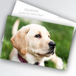 "Picture of Fujifilm DL600 / 650 inkjet paper - 4"" x 590' Luster"